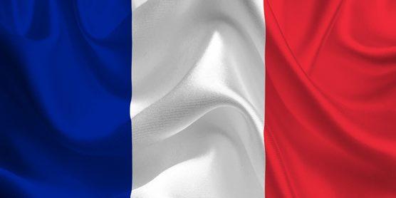Французский язык класс Шахты официальный сайт 89185456090